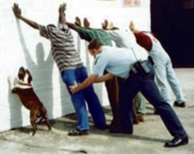 UNA FUERZA POLICIAL LA QUE EJECUTÓ AL PERIODISTA BRAD WILL, CONCLUYEN INDAGACIONES